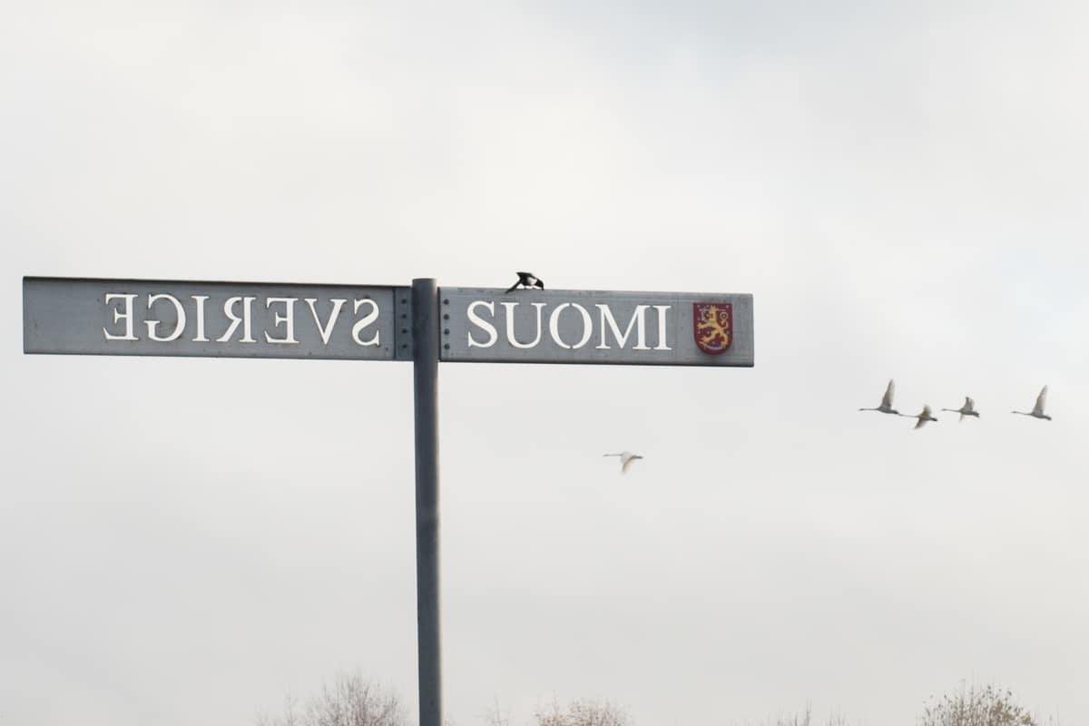 Ruotsin ja Suomen raja Torniossa.