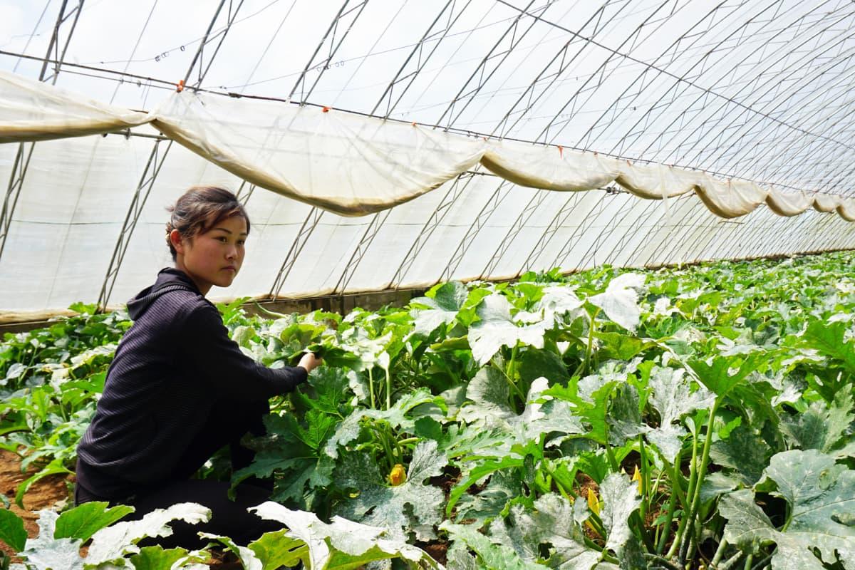 Kim Young Aen mielestä elintaso nousee puoluekokouksen jälkeen.