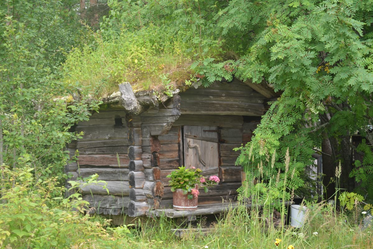 Ulkorakennus taiteilija Reijo Kivimäen tontilla