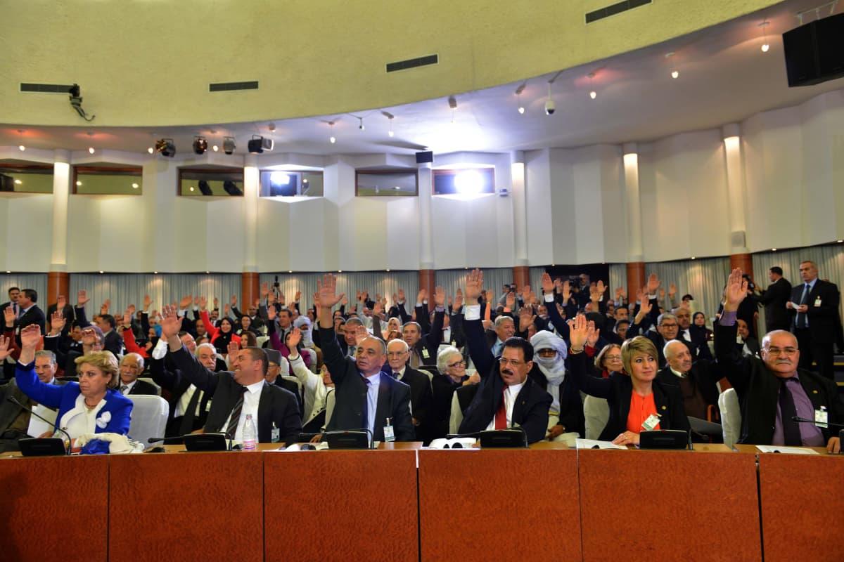 Algerian parlamentti hyväksyi helmikuussa perustuslain muutoksen, joka rajoittaa presidentin valtaoikeuksia ja laajentaa demokratiaa.