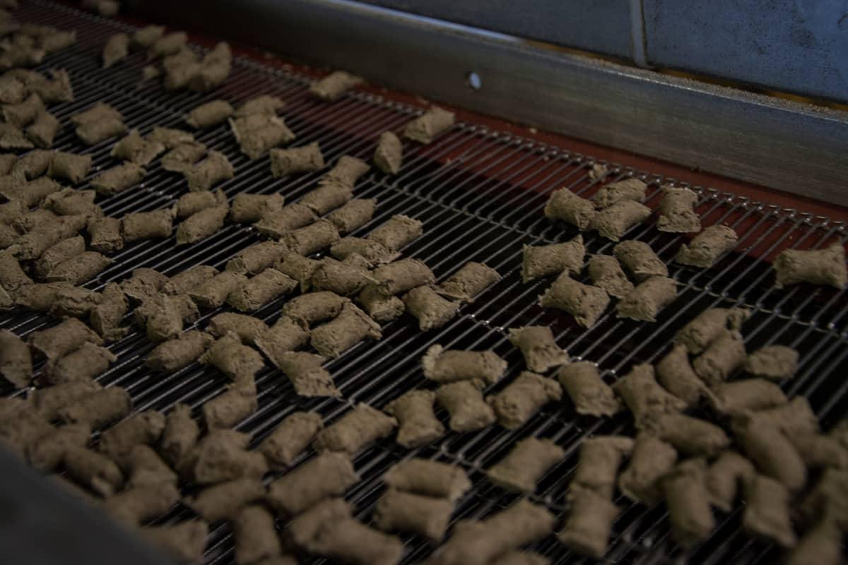 Koirien kuivamuonaa valmistetaan kolmessa vuorossa.