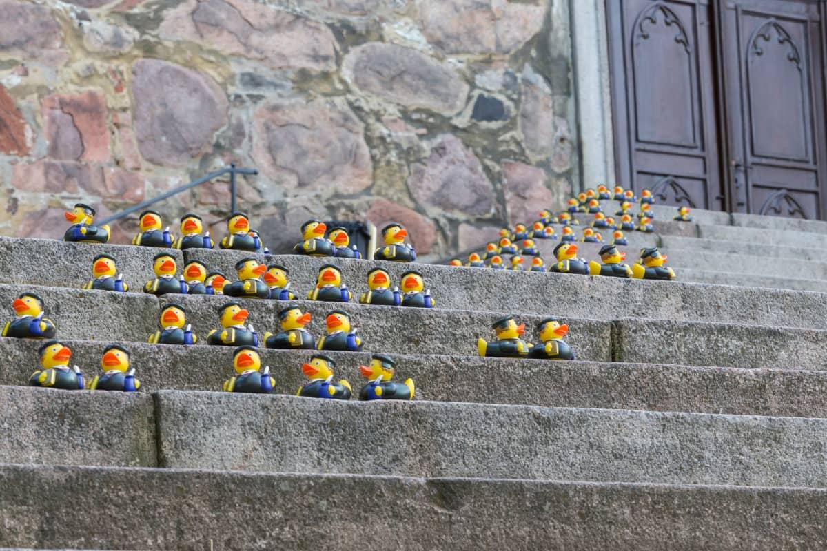 Luther-kylpyankkoja Turun tuomiokirkon portailla