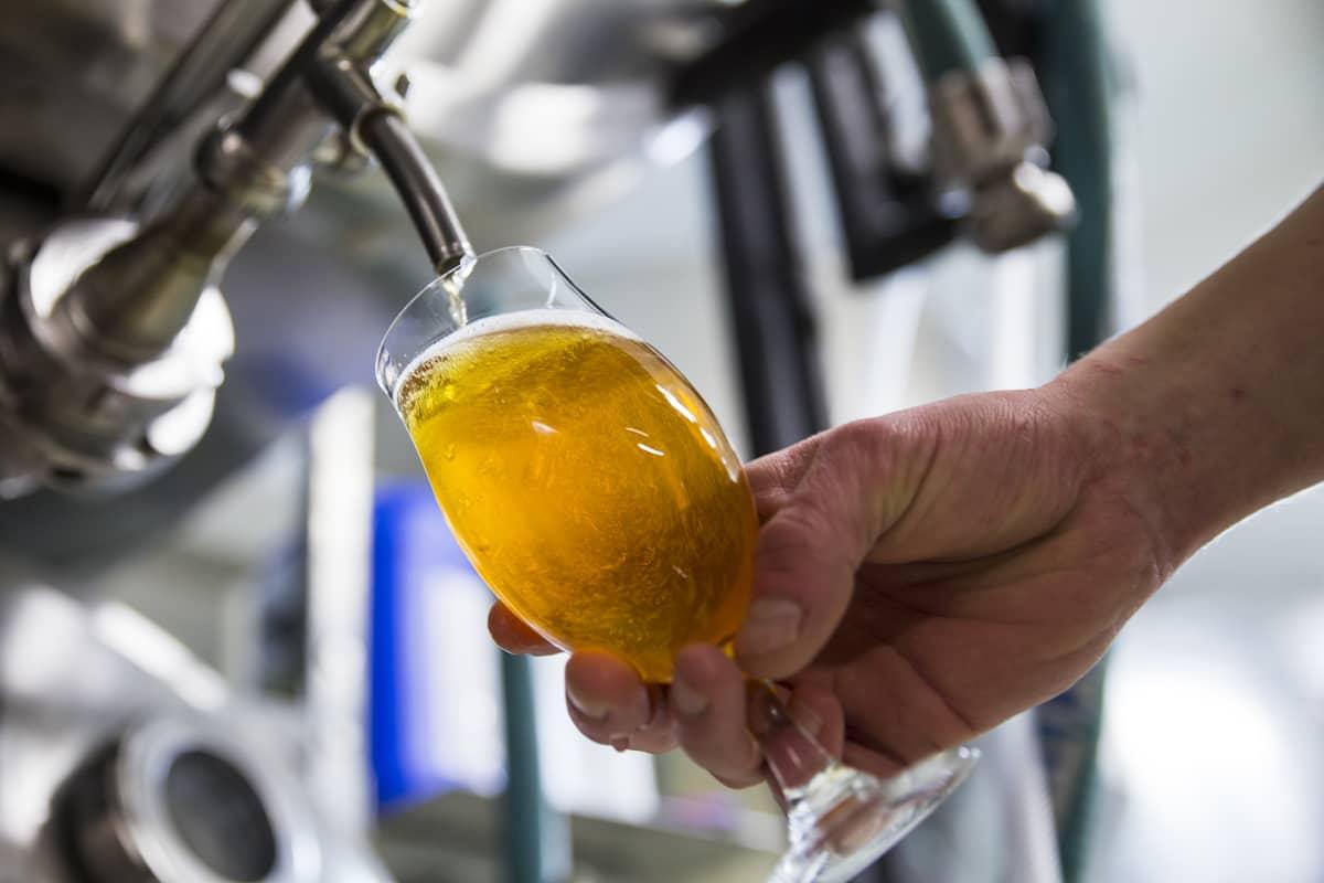 Olutta lasketaan lasiin Stadin Panimon tehtaalla