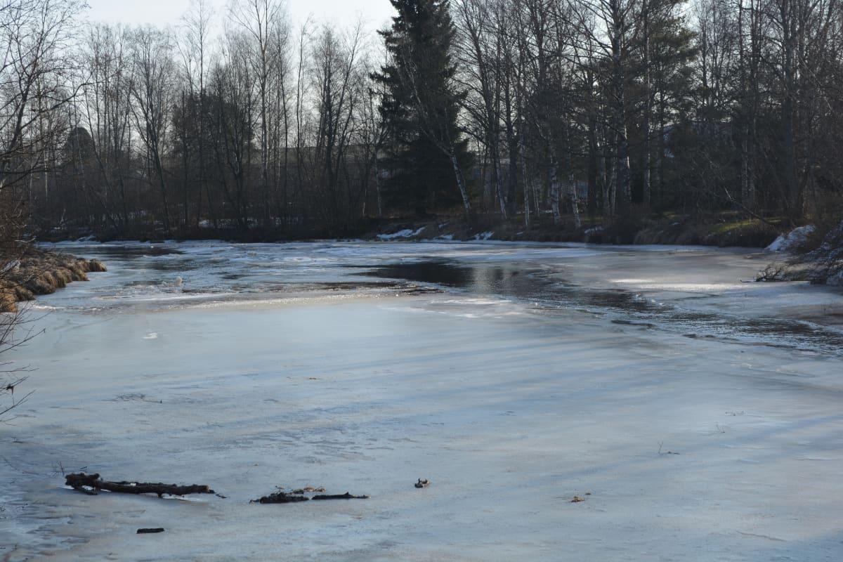 Kronoby å i islossningstider