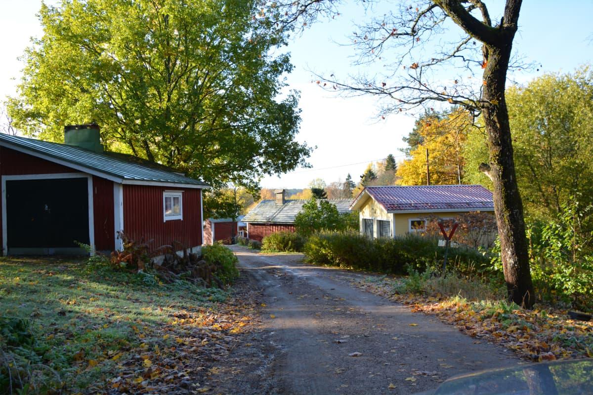 På båda sidor om en sandväg ligger trähus i rött och gult. Vid sidan av vägen står ett träd och färggranna lövhögar kantar vägen.