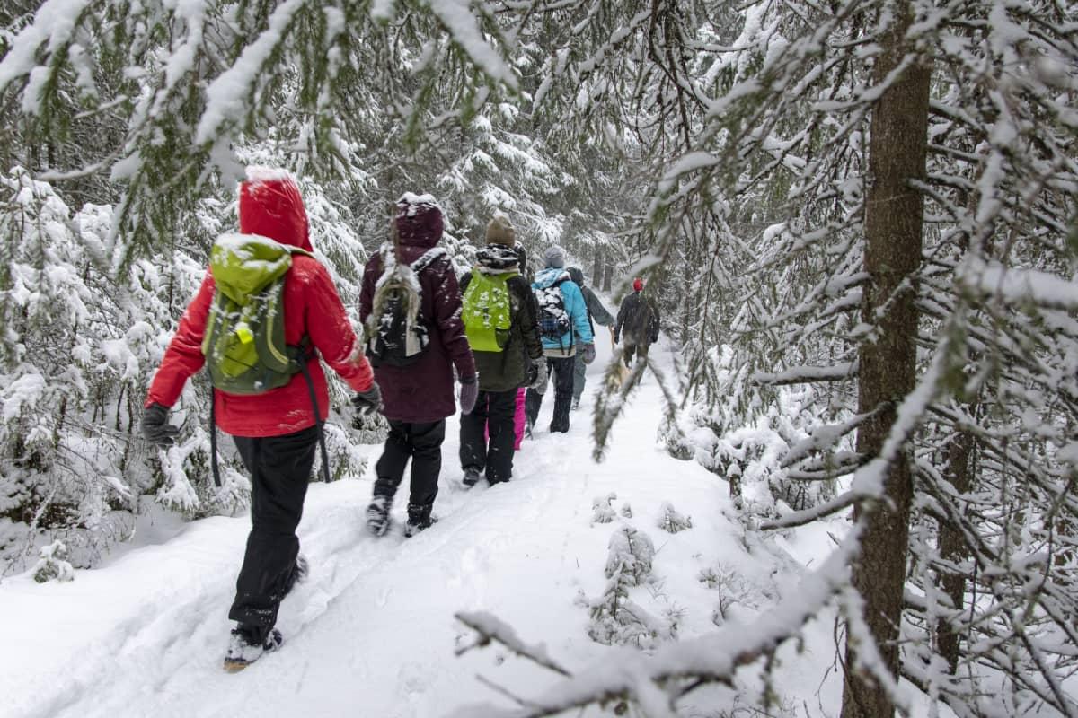 Ryhmä ihmisiä kulkee jonossa lumisessa metsässä