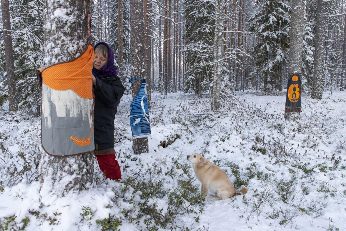 Irma Heiskanen sitoo itse tekemäänsä esiliinaa puun runkoon