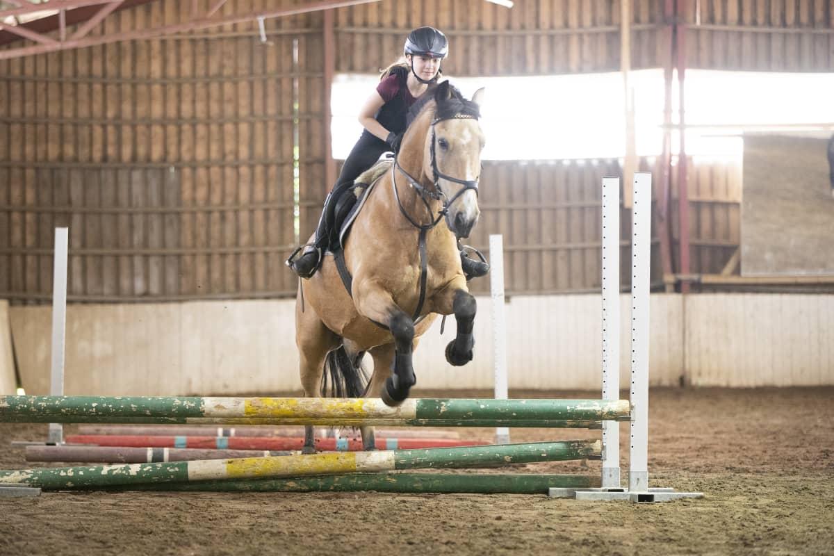 Veera Ikonen ratsastaa Vikke hevosella ratsastusleirillä Kuopiossa.