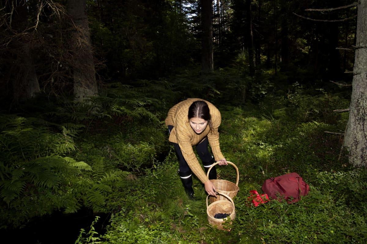 Sienestäjä metsässä.