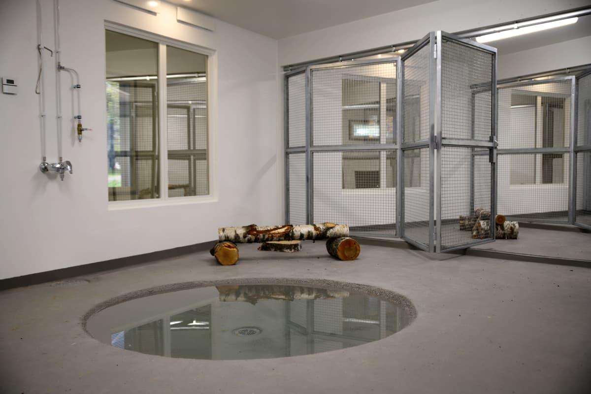 Heinolan vesilintuhoitolan sisällä on pyöreä vesiallas linnuille