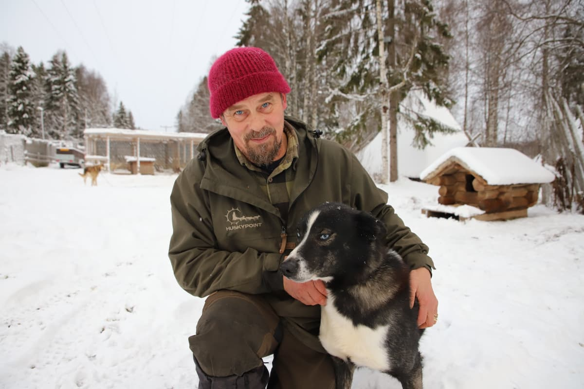 Rekikoirayrittäjä Aki Holck ja rekikoira Vilkas.