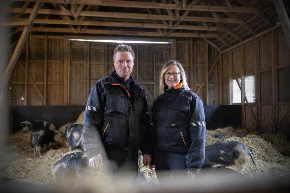 Sami ja Marika Koski pitävät Maalahdessa tilaa, jolla kasvatetaan Linderöd-sikoja