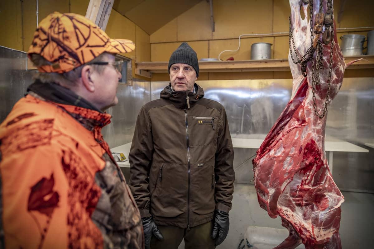 Olli Kursula ja Reijo lipponen teurastetun hirven ruhon vieressä.