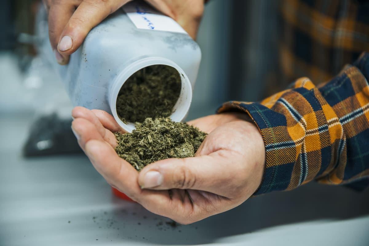 Biotalousinstituutin laboratoriossa tutkitaan käsiteltyä lantaa.