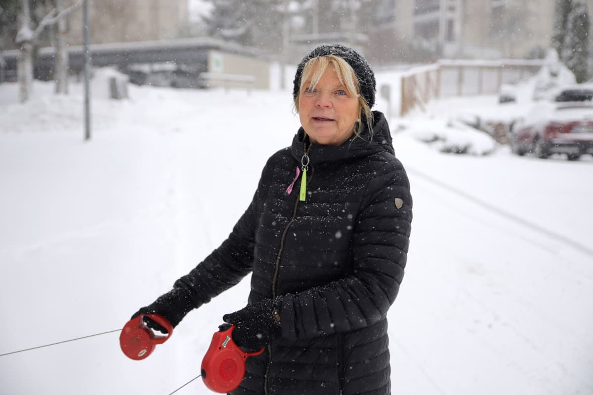 Jessica Löfgren-Eriksson ulkoiluttamassa koiriaan lumipyryssä Esoon Westendissä..
