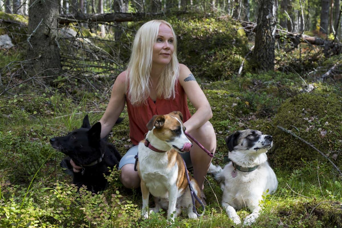 Filosofi Elisa Aaltola ja kolme koiraa metsässä.