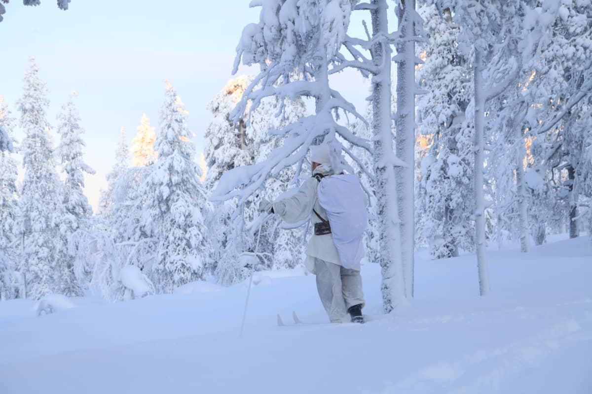 Valkoiseen maastopukuun pukeutunut metsästäjä seisoo talvisessa metsässä sukset jalassa