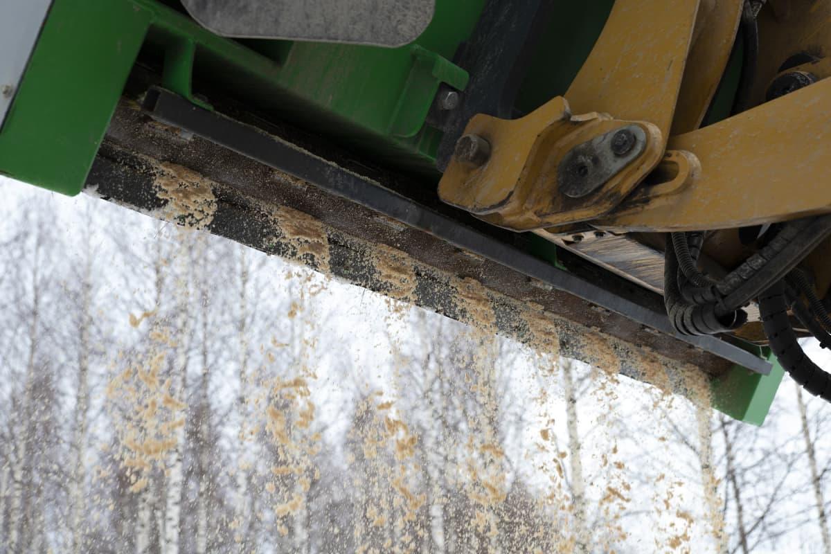Sahajauhoa valuu traktorin hiekotuskauhasta.