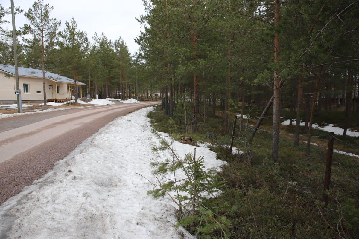 Hartikantien tonttialue omakotitaloja varten Pyhtäällä.