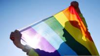 Suomalaistutkimus selvitti: Seksuaali- ja sukupuolivähemmistöjen huomioiminen on hyödyllistä yrityksille, myös taloudellisesti