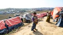 Количество беженцев выросло в прошлом году сильнее, чем когда-либо