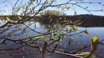 Helleraja rikki Porissa – lämpötila nousi 25,1 asteeseen