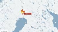 Navetta paloi Ylitorniolla – Neljä vasikkaa jäi tulen saartamaksi