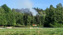 Индекс лесных пожаров достиг рекордного уровня
