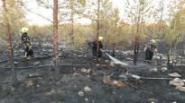 Suurta maastopaloa sammutettu läpi yön Kokkolassa – palon aiheuttajaksi epäillään metsätyökonetta