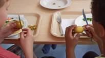 Kouluissa aletaan kehittää uusia ruokakasvatusmalleja: