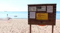 Terveystarkastajat ihmeissään – monet äidit ja isät antavat lastensa uida sinilevän seassa myrkytysriskistä huolimatta: ''Eilen uimme koko päivän''