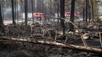 Yli 50 ihmistä evakuoitu Pyhärannassa suuren maastopalon takia, Venäjän maastopalot uhkaavat levitä Lappiin