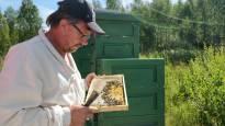 Mehiläistarhaaja tuntee yhteisönsä  –