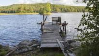 Selvitys: Kuopion Neulalahden myrkyt eivät ole riski ympäristölle tai terveydelle – kaupungilla on alueella miljardiluokan rakennushanke