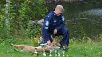 Suomen paras poliisikoira etsii työkseen ruumiita, mutta eniten palkitsee, kun ihminen löytyy elossa
