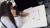Uusi apu romaninuorille toi tulosta: Kaikki pääsivät peruskoulusta ja numerot nousivat –