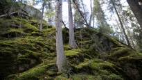 Vuosikausia riideltyä louhosta Vantaalla ei ole vielä kuopattu –  Pohjoismainen rakennusjätti harkitsee uuden ympäristöluvan hakemista
