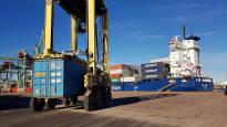 Kotkan satama sai ison asiakkaan: jättimäistä sellutehdasta Kuopioon puuhaava Finnpulp kuljettaa sellunsa maailmalle Mussalon kautta