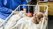 Suomalaiset ovat luomuilijoita, mutta synnytyspelko kasvaa – 5 mielenkiintoista asiaa synnytyksestä