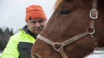 Matti Pakarinen rakastaa hevosiaan – ja siksi hänestä ainoa oikea ratkaisu on lopettaa ne itse ja syödä, kun aika koittaa