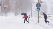 Снежная буря в четверг принесет на юг 20 сантиметров снега