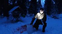 Supikoiran ja villisian jälkeen odotellaan kultasakaalia – metsästäjät varautuvat tulokaslajeihin Suomen luonnossa