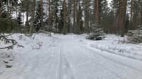 Hiihtäjät valtaavat talvisin ulkoilumaastot – Kokkola vastaa kävelijöiden toiveisiin hoidetulla reitillä
