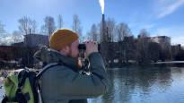 Kaatopaikka yllättää lintuparatiisina – vuoden lintuyhdistys esittelee alueensa 100 parasta paikkaa bongaukseen