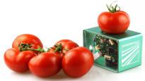 Saksalaistutkijat: Elintarvikkeiden tuoreuden voi nähdä kännykästä – taskukokoisen skannerin luvataan mittaavan niin tomaatit kuin jogurtitkin