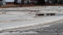 Pohjalaisjokien kevät ei tulvahuippuja hätyyttele –