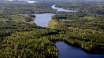 Saimaalle rakennettavan kanavan hintalappu olisi 14 miljoonaa euroa – Kutilan kanavan päärahoittajiksi toivotaan valtiota ja EU:ta