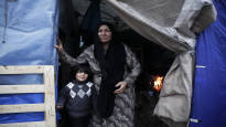 МВД: Финляндия примет до 175 просителей убежища из лагерей Средиземноморья