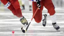 HIFK vetäytyy viikoiksi Bandyliigasta – ei otteluita edes tyhjille katsomoille