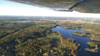 Suomi voi hakata lisää metsiä ja ilmastotavoitteet täyttyvät silti, kertoo uusi laskelma – tutkijat ja luonnonsuojeluliitto erimielisiä
